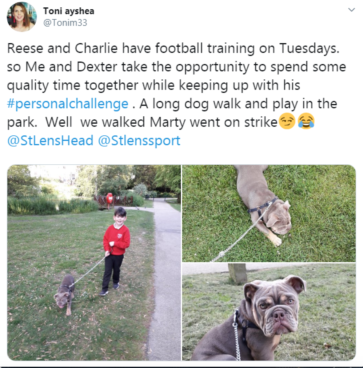 tweet from a family involved in the challenge showing them on a dog walk