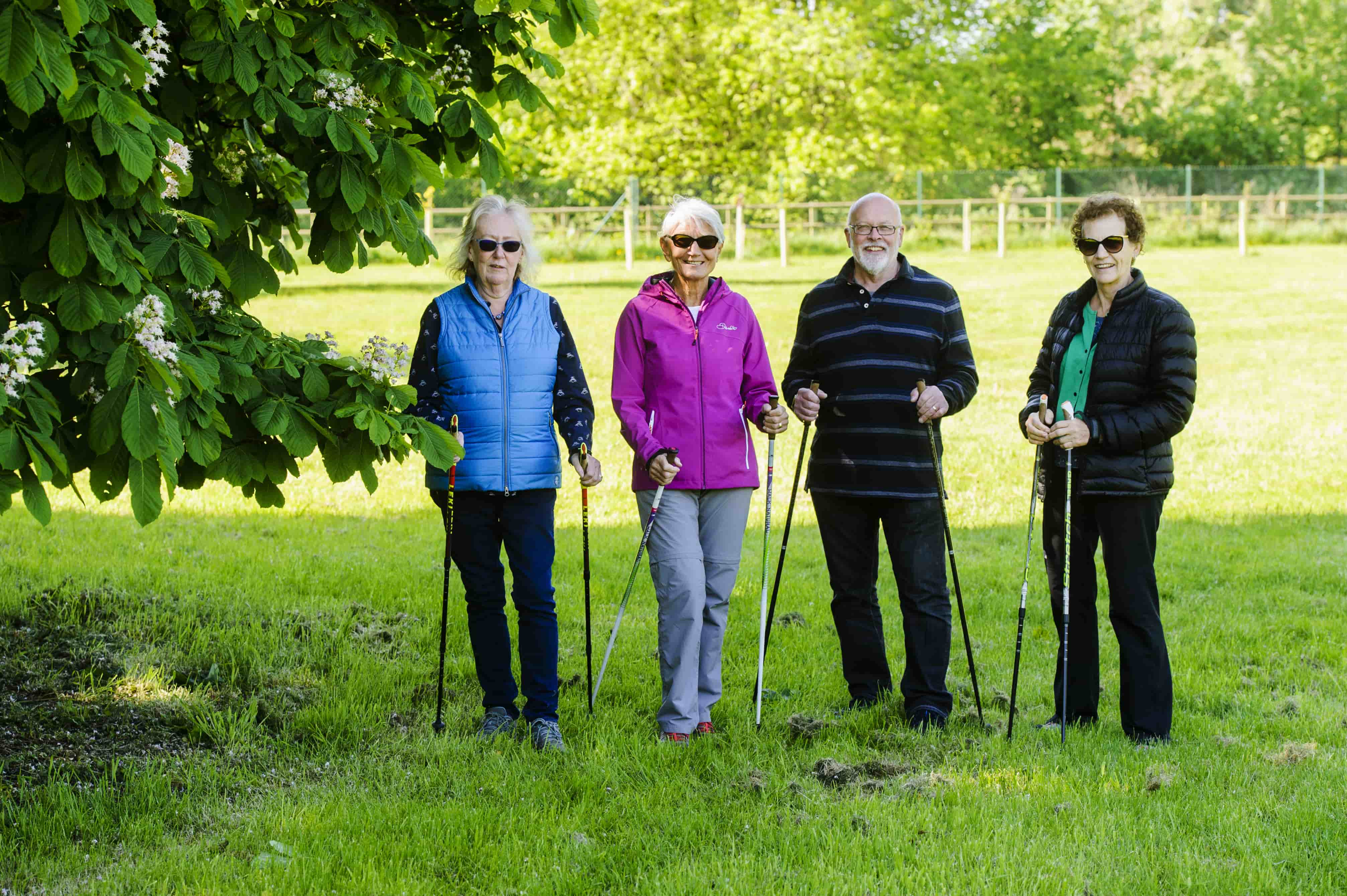 group nordic walking session