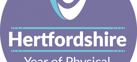 logo for Year of Physical Activity