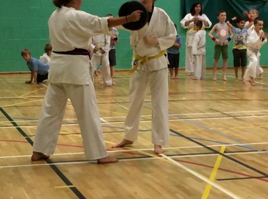 Melanie coaching a martial arts class
