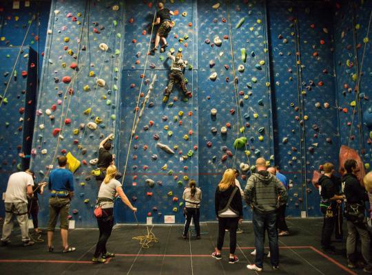 children on climbing wall